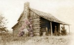 cabin with flower