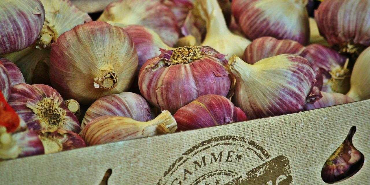 garlic-868878_1280
