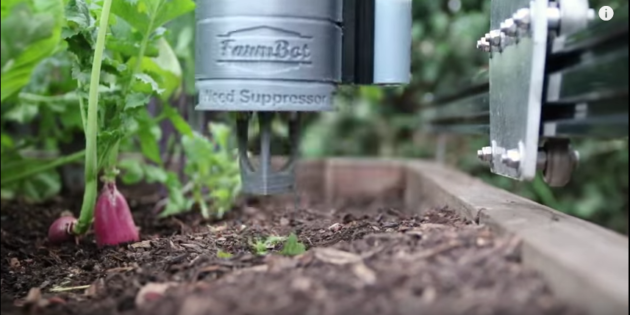 Farmbot Automation For food Production
